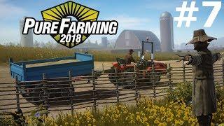 Pure Farming 2018 (7) — Kawa i Konopie