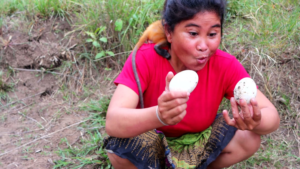 Woman baby monkey Meet goose egg - Cooking Goose Egg eating delicious - Survival Skill
