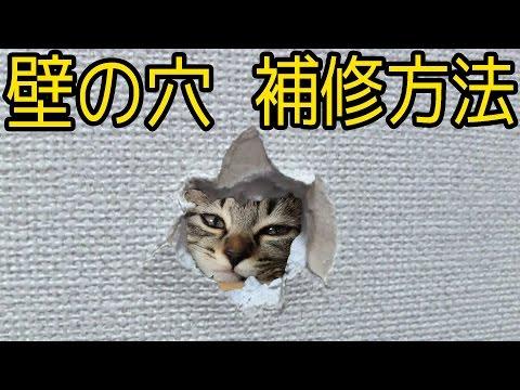 壁の穴 補修方法 石膏ボードの穴修理方法(壁ドンの後に)