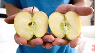 This Week I Learned to Split an Apple with my Hands