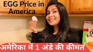 Price of 1 egg in USA अमेरिका में 1 अंडे की कीमत Indian in USA#NRIvlogger#Indianyouber in USA