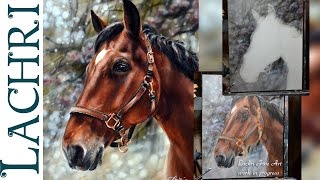 Speed Painting a horse in oil & acrylic paint - Time Lapse Demo by Lachri