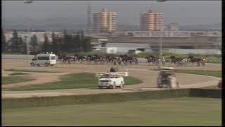 Vidéo de la course PMU PREMI TORRE DEL RAM