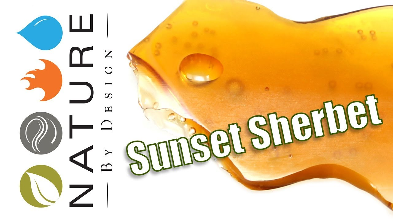 Sunset Sherbet Cannabis Strain (Here's everything you need