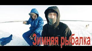 Глухозимье. Ловля окуня на мормышку | Зимняя рыбалка на Онежское озере.