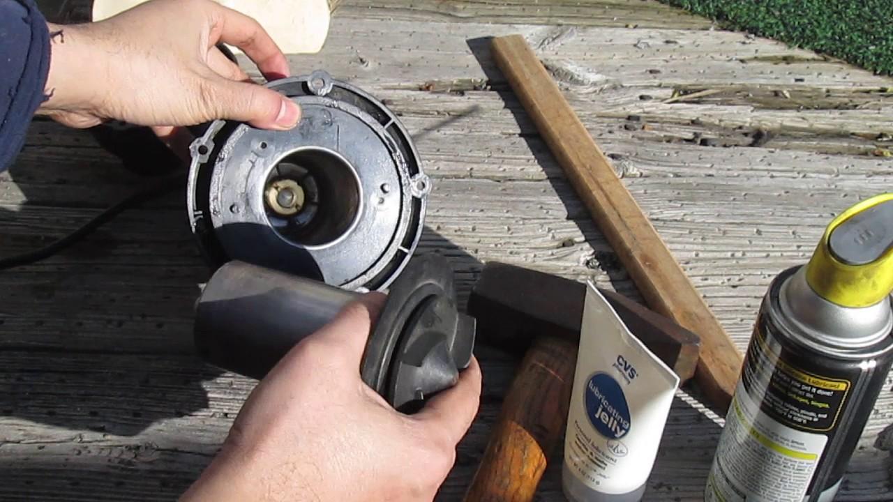 Diy Repair Unclog Impeller Cleaning Proline Submersible