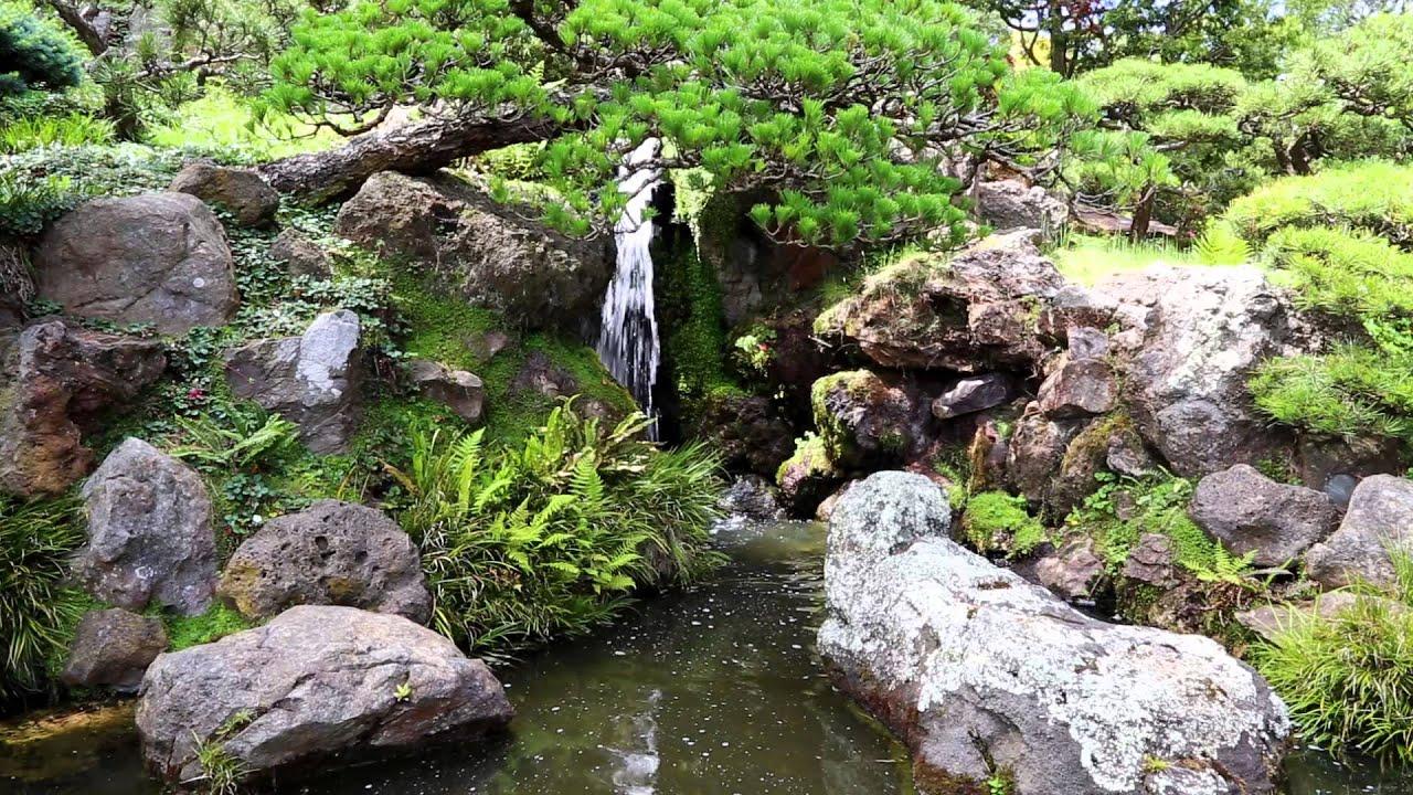 Pause relaxation au jardin japonais parc du golden gate for Jardin japonais maison