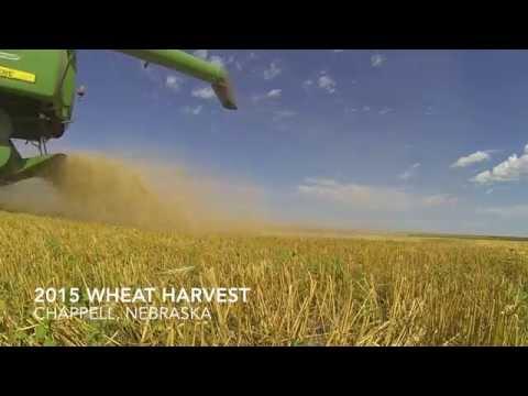 Nebraska Wheat Harvest 2015 - GoPro - No Music