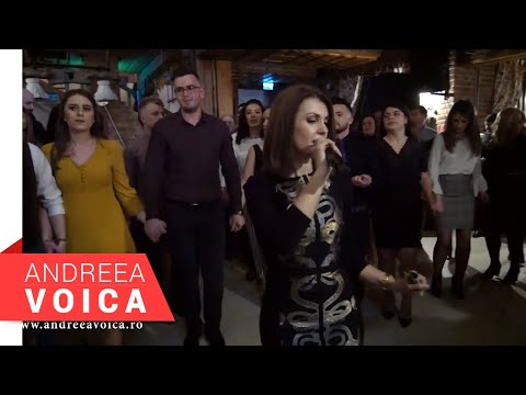 Andreea Voica - Colaj Brauri Live 2019 (Moara cu Noroc Ineu)