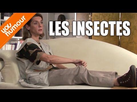 Victoire chez le psy, Les insectes