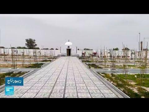 تونس: -حديقة أفريقيا-.. مقبرة لكافة الأديان صممها جزائري لدفن المهاجرين بكرامة  - نشر قبل 11 ساعة