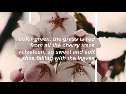 New Politics - Color Green Lyrics