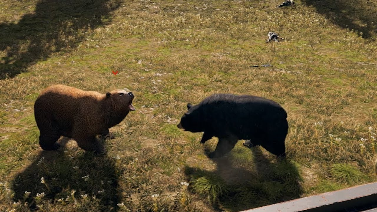 far cry 5 black bear location