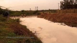 Irugur Lake Pollution - Save Coimbatore Wetlands
