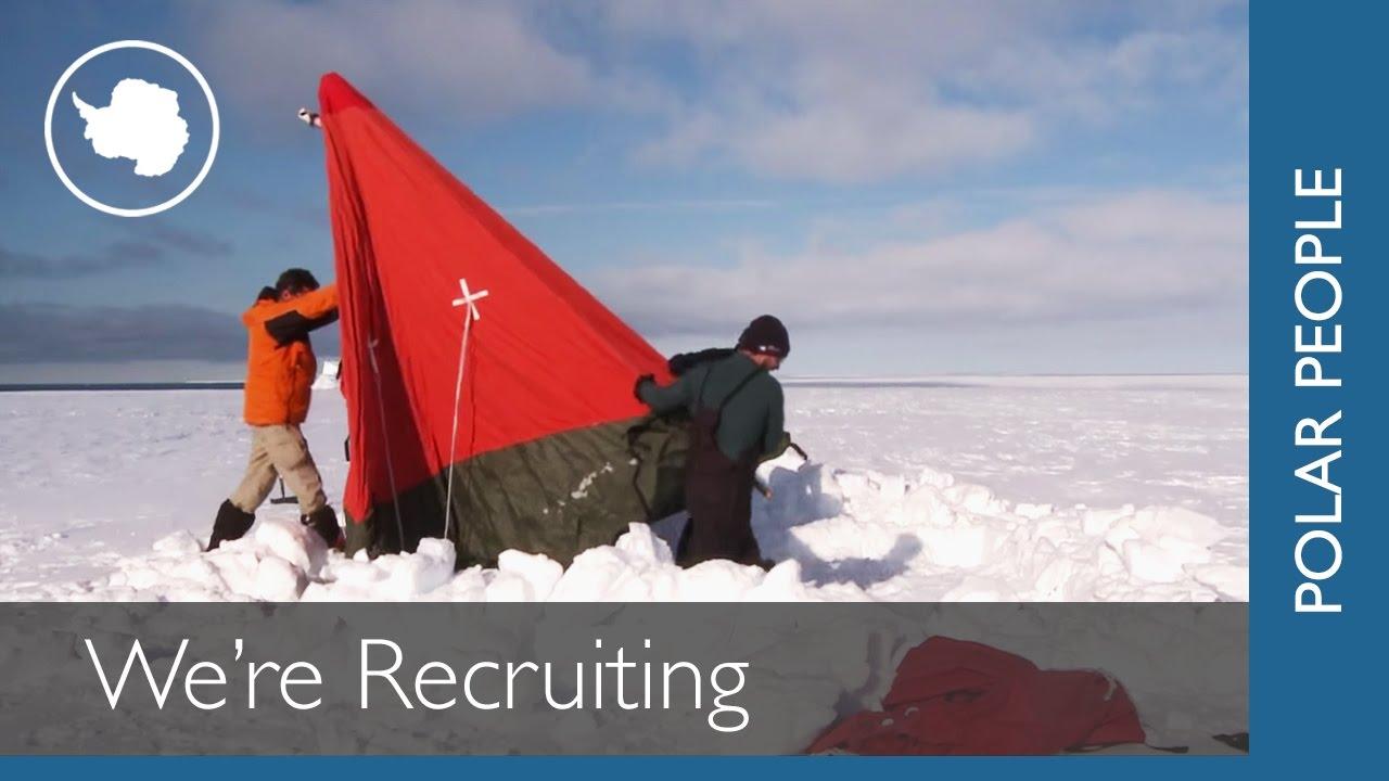 unusual travel jobs hiring right now com