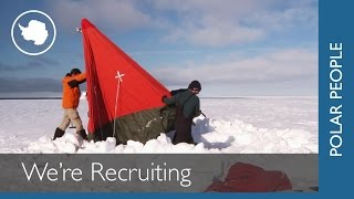 Cool Antarctic Jobs Recruiting Now