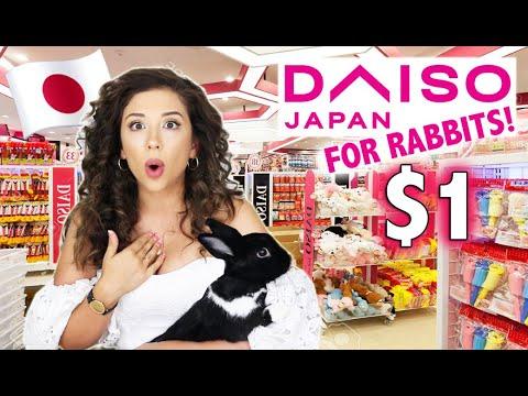 JAPANESE DOLLAR STORE FOR RABBITS SHOPPING SPREE!