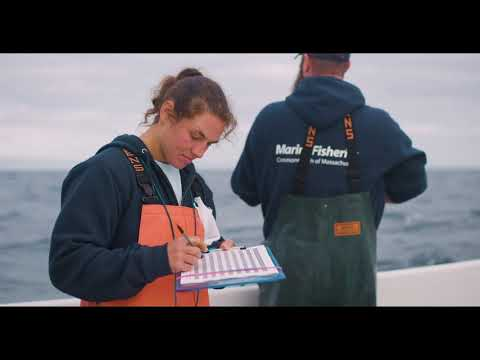 Recreational Groundfish Research In The Gulf Of Maine