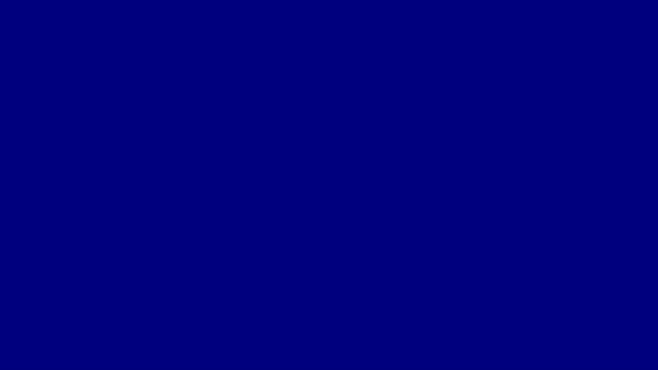 Navy Blue Official Color 000080
