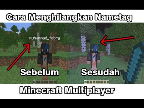 Cara Menghilangkan Nama/Nametag Pada Mincraft PC !!