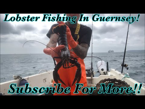 Lobster Fishing In Guernsey, Channel Islands!!