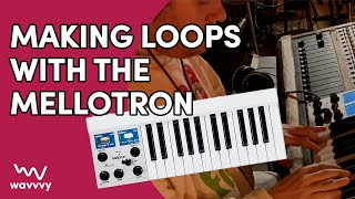Making loops with the MELLOTRON M4000D (this instrument is insane!)