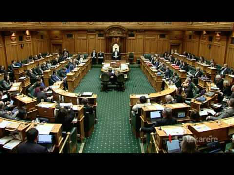 Te Tai Tonga MP calls for support for Māori seat entrenchment bill