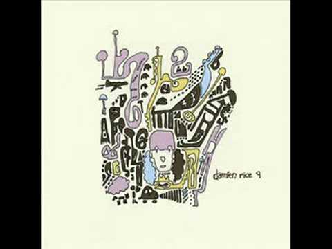 Damien Rice - Accidental Babies (Album 9)