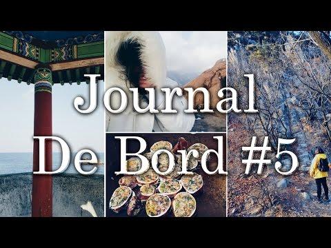 JDB #5 : CINQUIÈME MOIS EN CORÉE DU SUD
