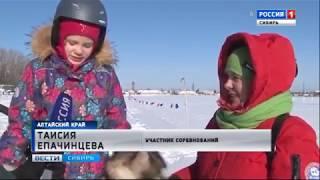 Любительские соревнования по скиджорингу провели в Барнауле