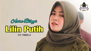 LILIN PUTIH (Evi Tamala) - AURA BILQYS (Cover Dangdut)