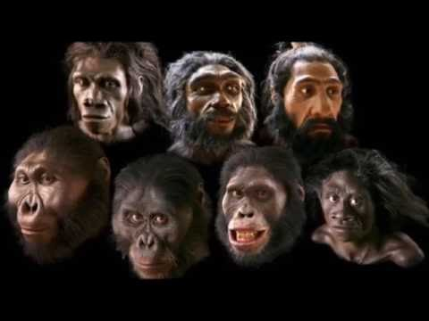 What early man really looked like