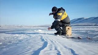 Рыбалка Красноярское водохранилище 3 протока 27.12.2016