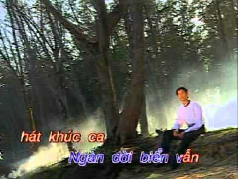 Chi Tai Vo Tinh - Nguyen Phi Hung - karaoke