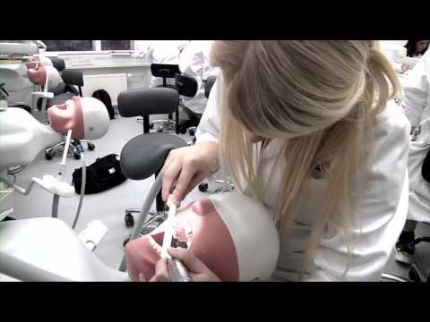 Tandlægestuderende på Aarhus Universitet
