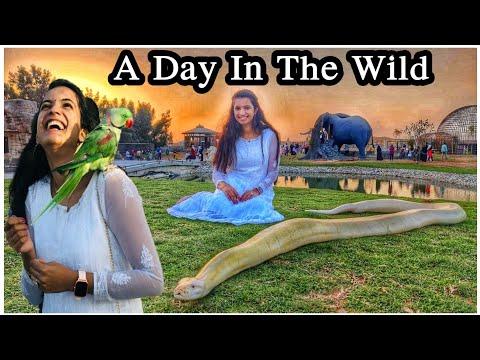 The Zoo Wild Life Park Umm Al Quwain / The Hidden Zoo In Umm Al Quwain/ Zoo In Dubai / Umm Al Quwain