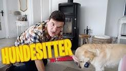 Tourette als Hundesitter