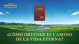 """Película evangélica """"Desde el trono fluye el agua de la vida"""" Escena 8 - ¿Cómo obtener """"el camino de la vida eterna""""?"""