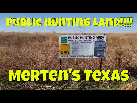 Public Land Hunting In Merten's Texas