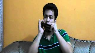 An Introduction - Types of Harmonica being used in Indian Harmonica Industry - by Ashay Kumar