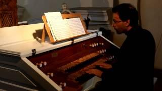 Luca Scandali -  varhany