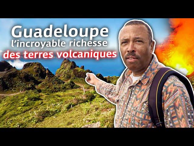 Guadeloupe, l'incroyable richesse des terres volcaniques