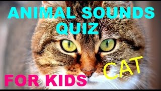 Kids Animal Quiz For Kids And Toddlers   Learning Quiz   What Sound   Animal Quiz   Quiz