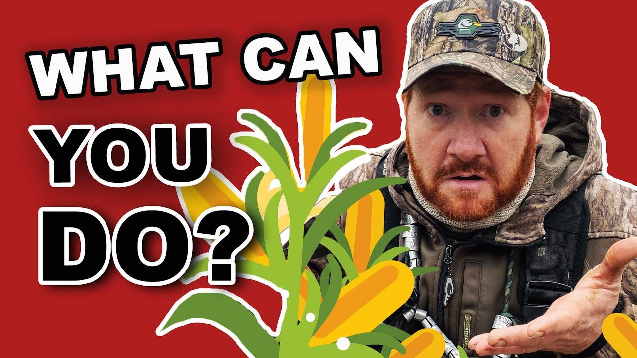Duck Hunting Club Secrets | Planting for Ducks | Tips to Compete!