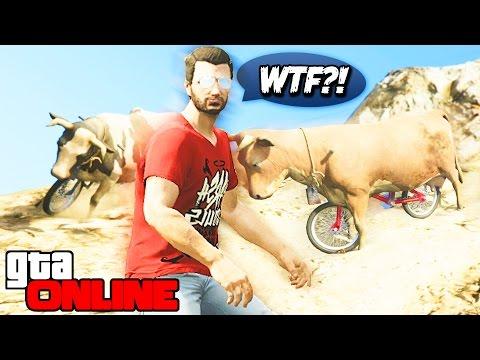 GTA 5 Online (PS4) - Коровы на велосипедах! #94