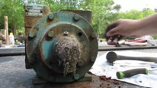 fuel Fridays- tear down of the Blackmer TDX2D fuel pump