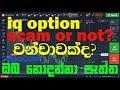 iq option scam or not ? sinhala (Binary Option)