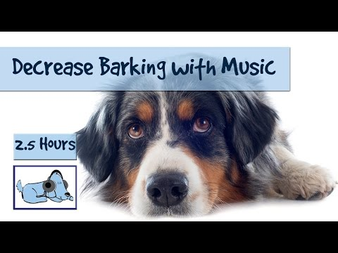 Decrease Barking and Howling from Your Dog with Relaxing, Ca