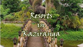 Kaziranga   Best Resort in Kaziranga ?   S1 E1   Kaziranga National Park   Weekend Trip   Assam