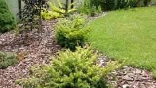 Zahrada Real